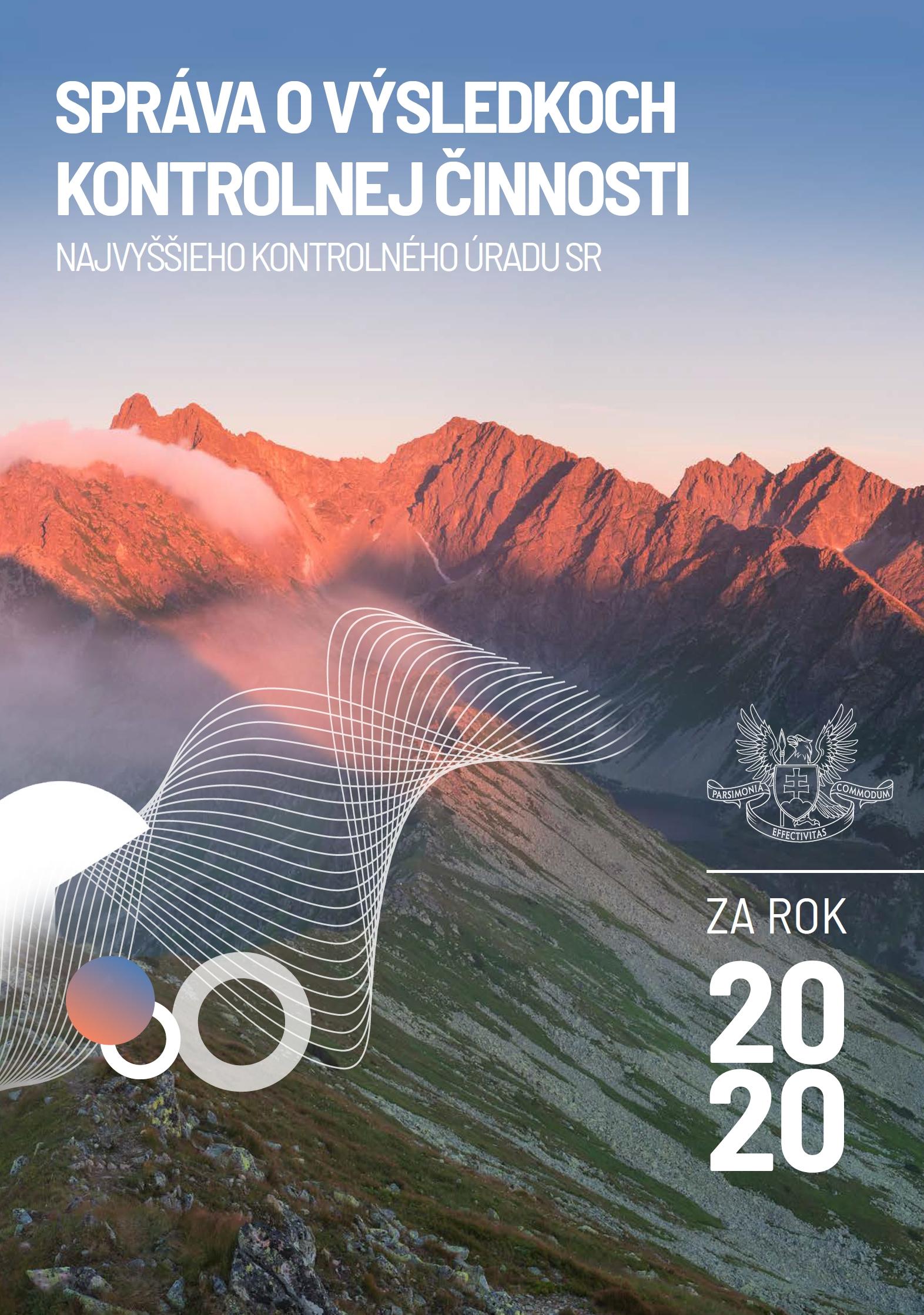 náhľad - Výročná správa 2020